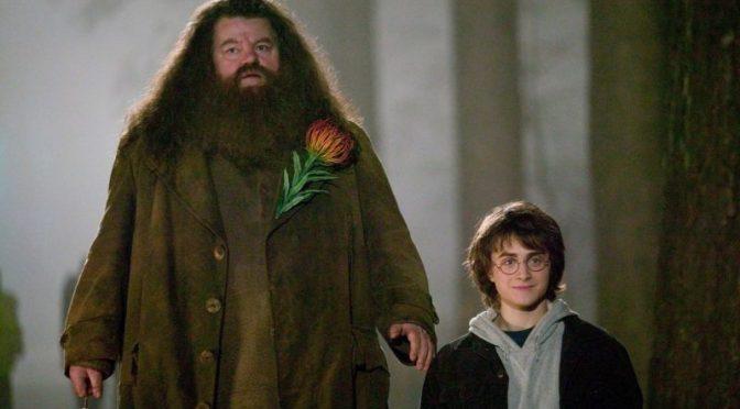В третьих «Фантастических тварях» могут появится еще два персонажа «Гарри Поттера»
